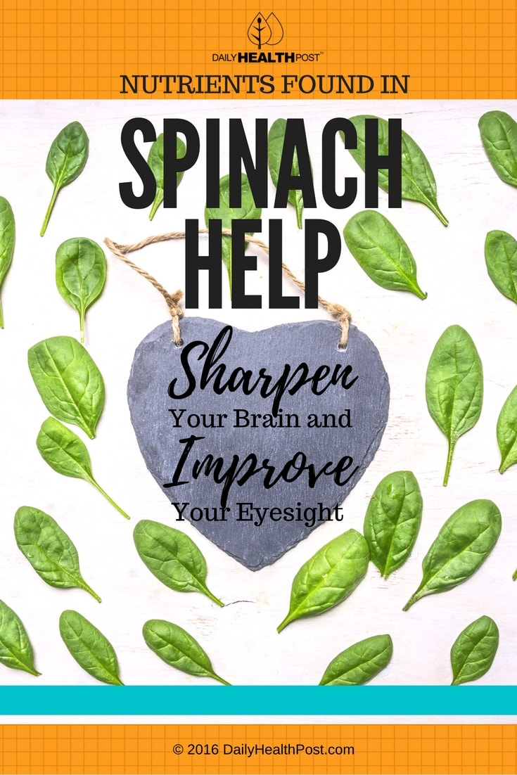 nutrients-found-in-spinach-help-sharpen-your-brain-and-improve-your-eyesight