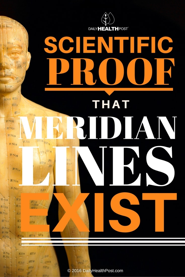 scientific-proof-that-meridian-lines-exist