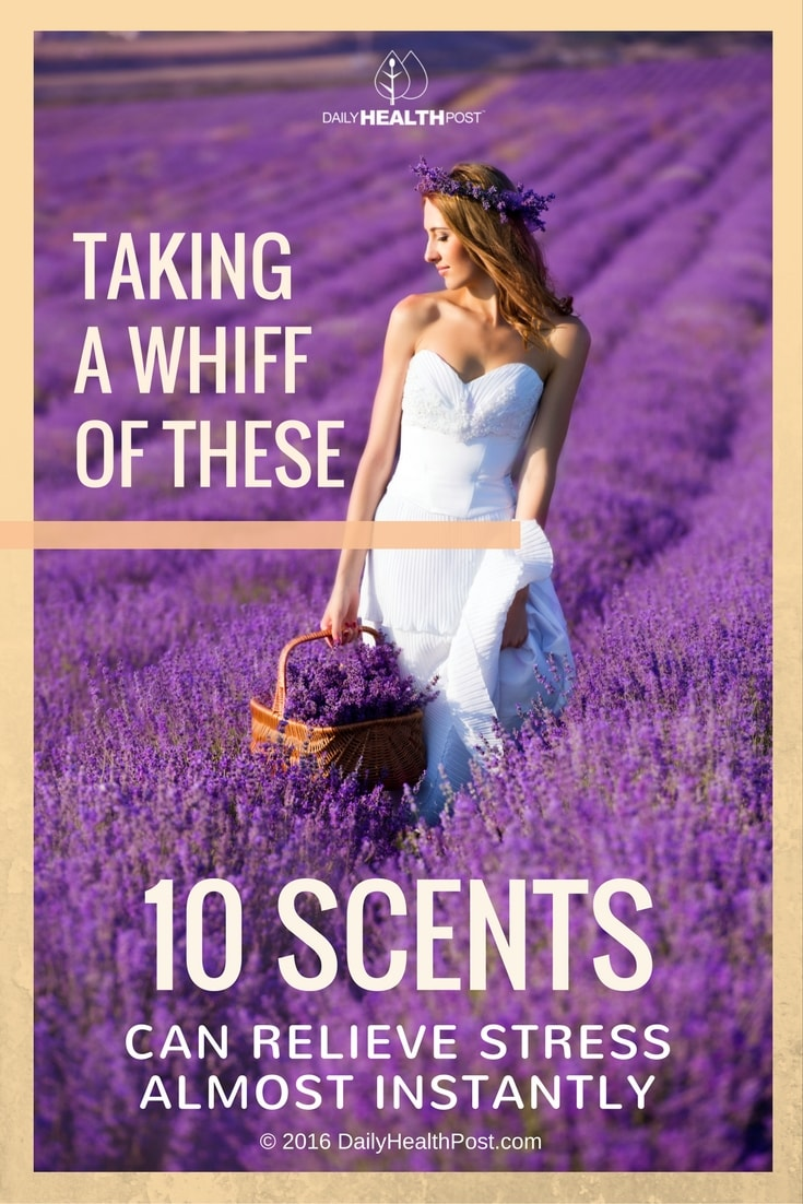 taking-a-whiff-of-these-10-scents-can-relieve-stress-almost-instantly