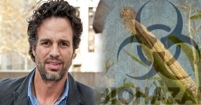 actor mark ruffalo monsnato ceo