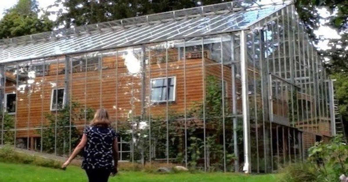 Couple Builds Homemade Greenhouse Around Home To Keep Warm