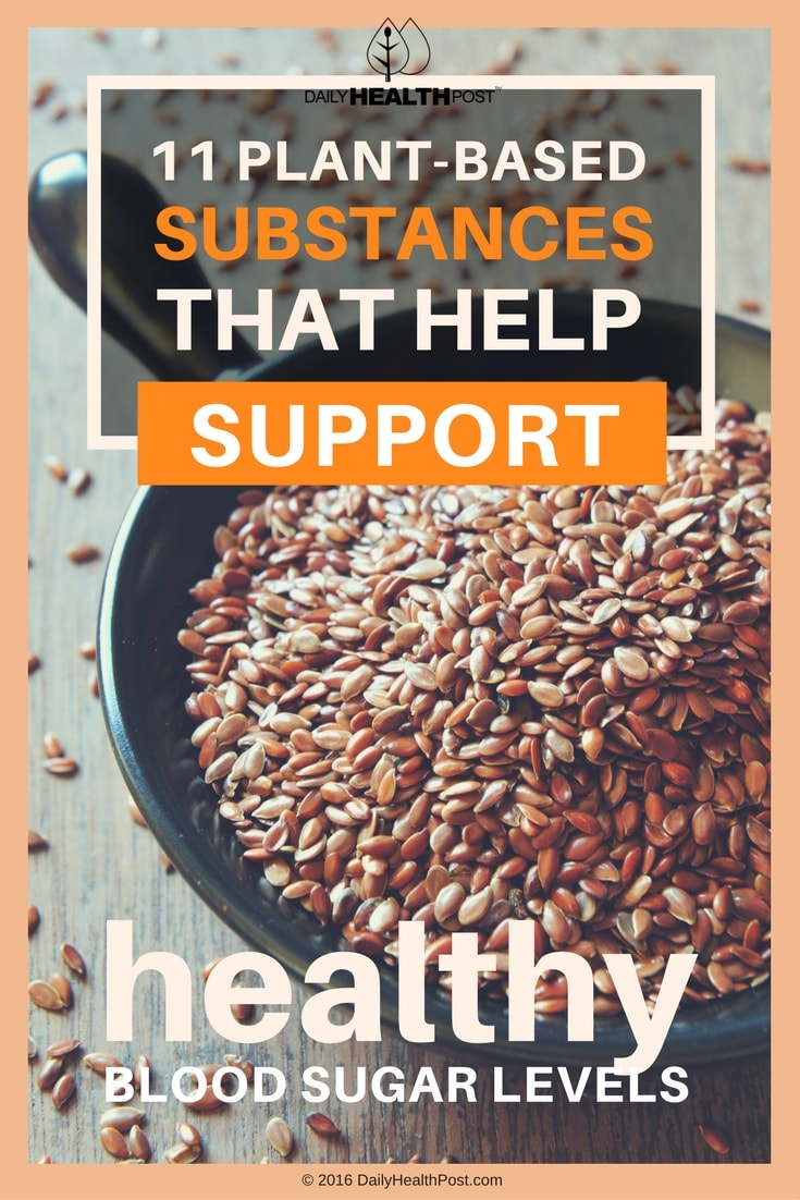 11-plant-based-substances-that-help-support-healthy-blood-sugar-levels