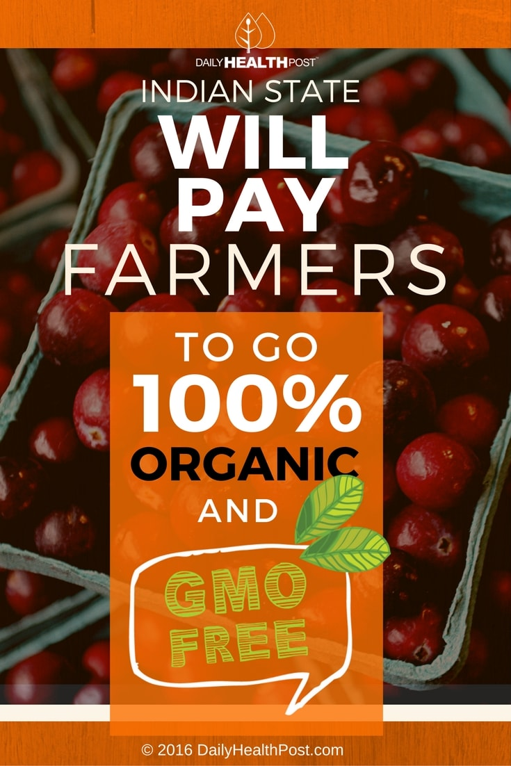 indian-state-will-pay-farmers-to-go-100-organic-and-gmo-free