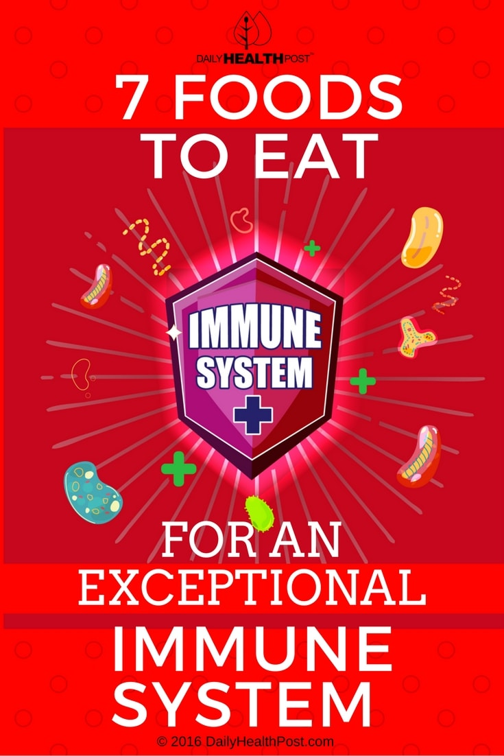 7 Foods To Eat For An Exceptional Immune System