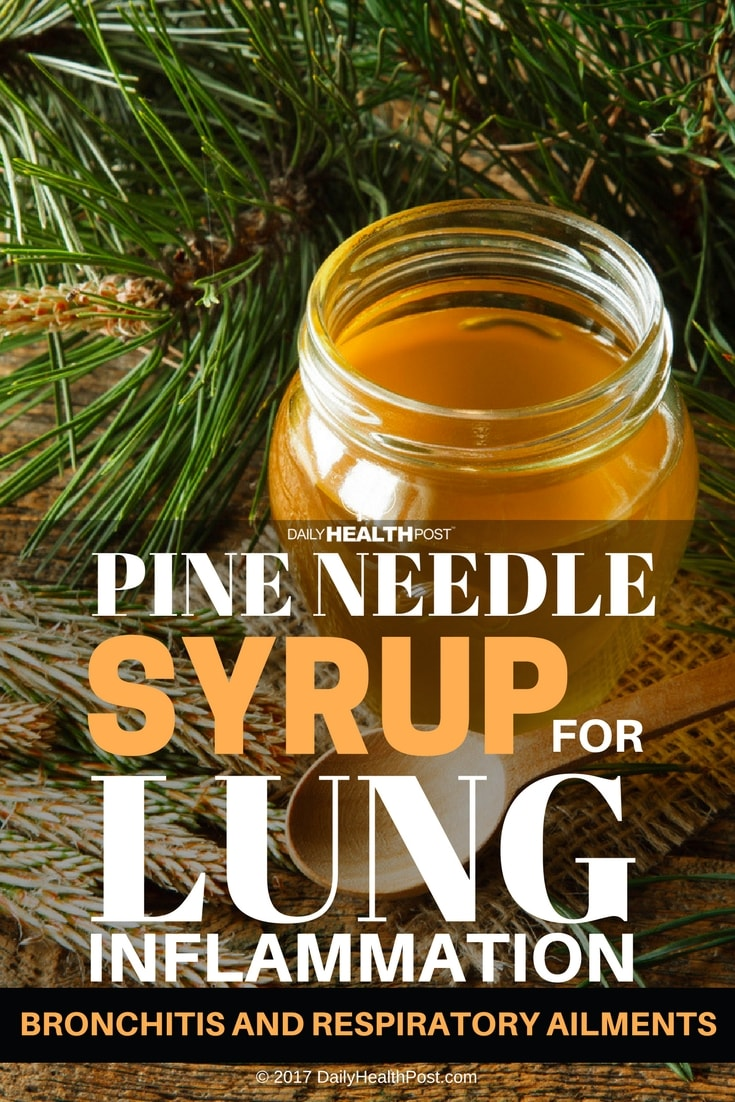 pine needle syrup for lung inflammation