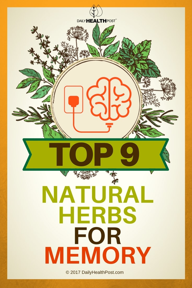 Natural herbs to boost brain function image 2