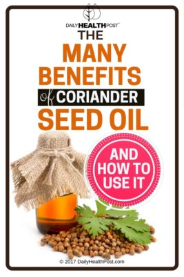 The Many Benefits of Coriander Seed Oil and How to Use It 1