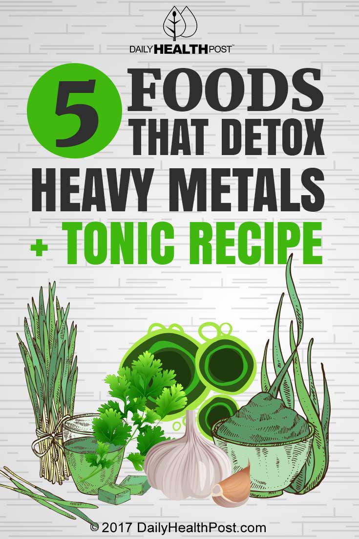 Top 5 Foods that Detox Heavy Metals and Toxins With Protocol