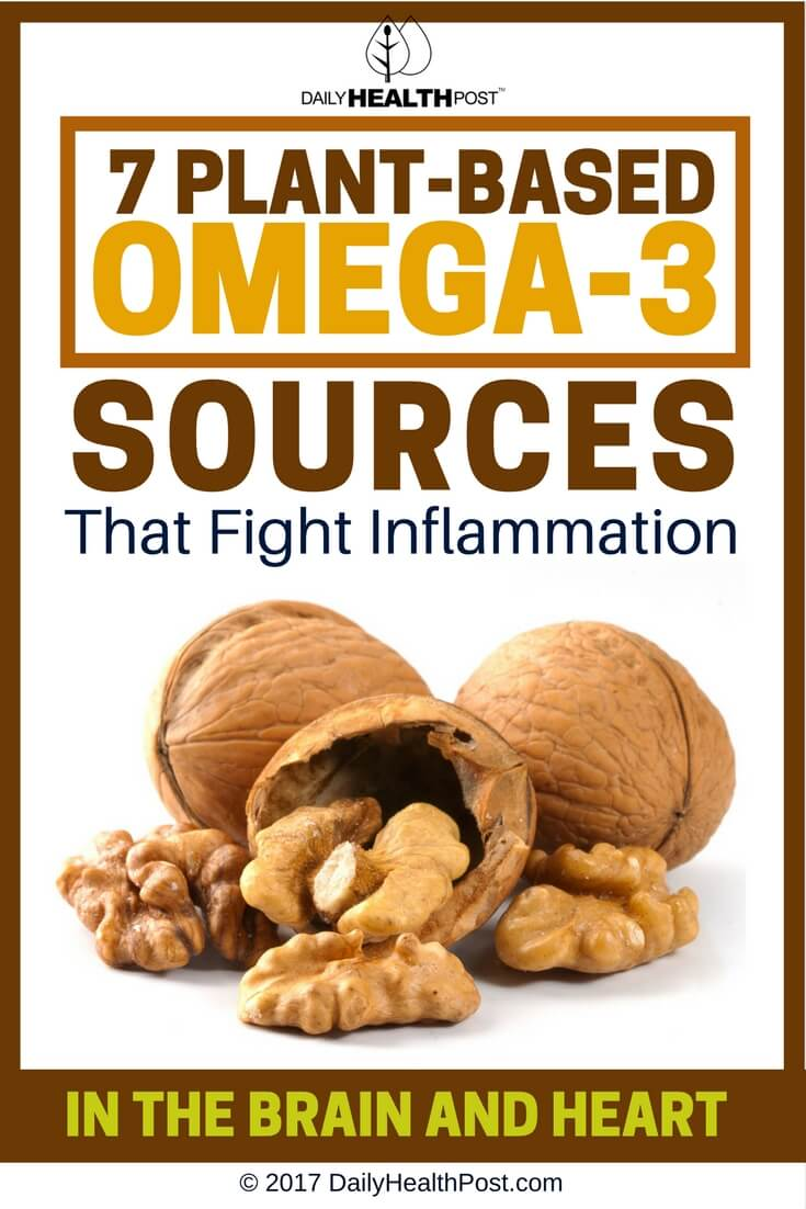 plant-based omega-3 sources