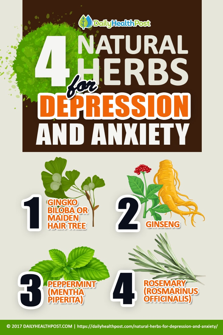 these 4 herbs can protect your brain from alzheimer\u0027s, depression4 natural herbs for depression and anxiety