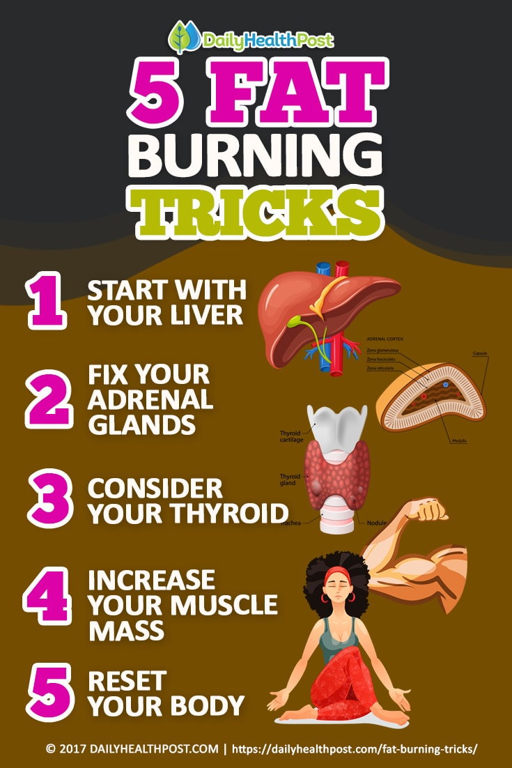 fat burning tips