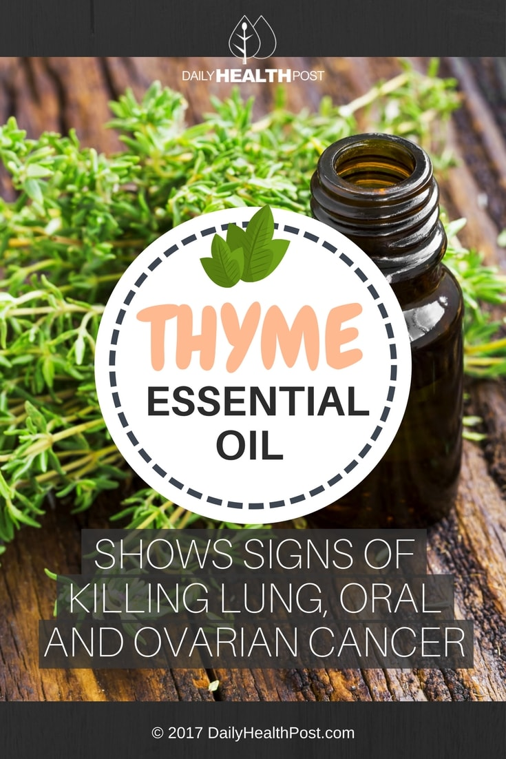 thyme essential oil cancer