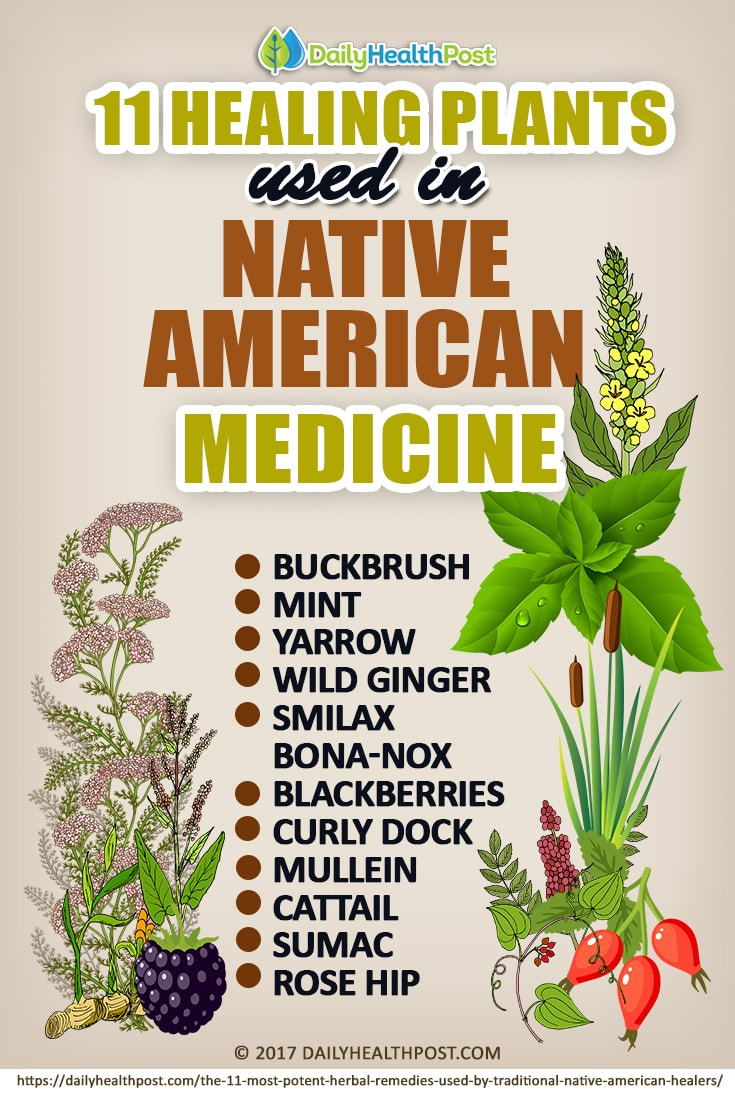 Get e-book Native American Natural Remedies for Native Americans