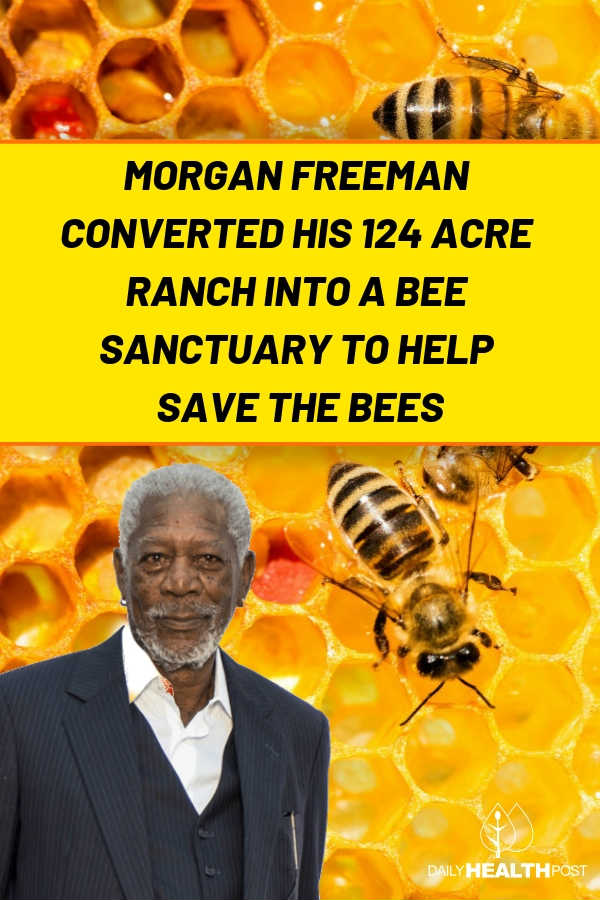 morgan freeman bees